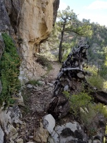 Hiking in Walnut Canyon, Flagstaff, Arizona