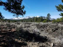 Sunset Crater Lava Flow with Mount Humpries