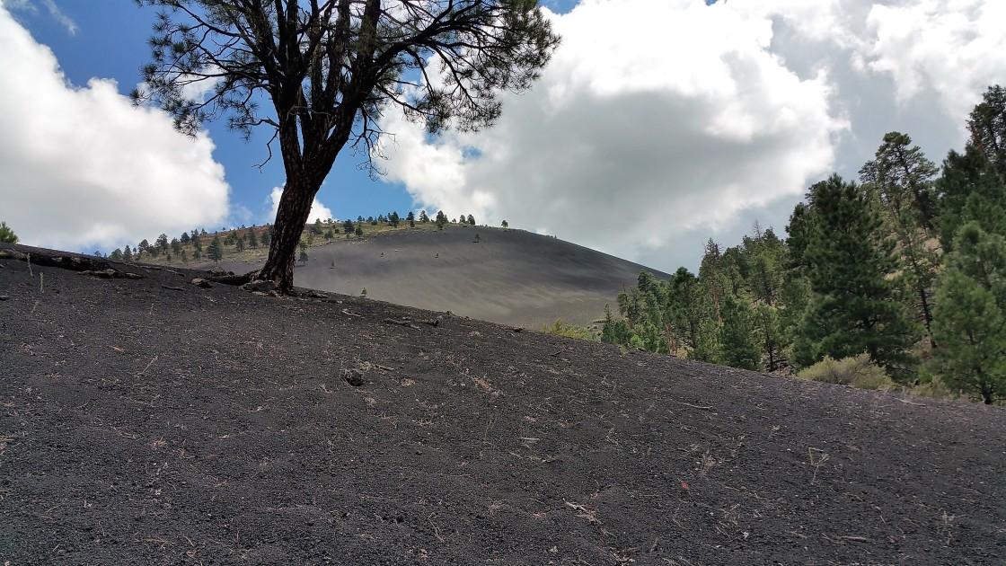 Lava Flow Trail. Hiking Flagstaff, Arizona.