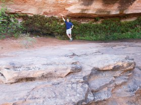 Hanging Gardens Hiking in Arizona Desert Rusty Ward