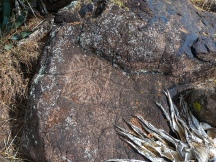 Skull Mesa-123